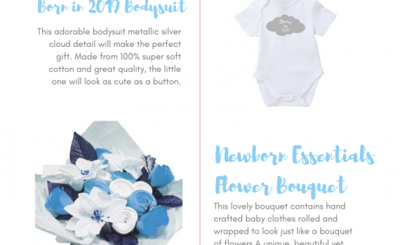 BibEasy Bibs -Top Baby Gift Ideas